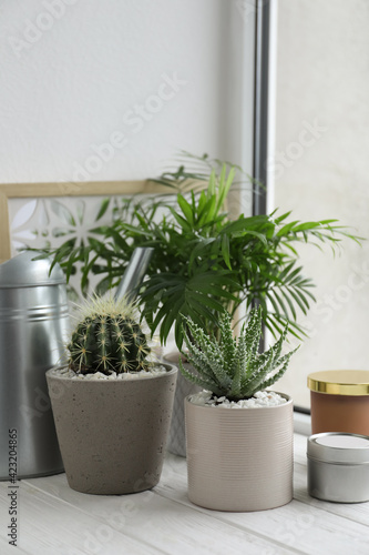 Fotografie, Obraz Beautiful Aloe, Cactus, Chamaedorea in pots with watering can and decor on white wooden windowsill