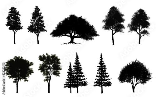 Fototapeta Collection of abstract shadow tree side view isolated on white background  for landscape and architecture layout drawing, elements for environment and garden obraz