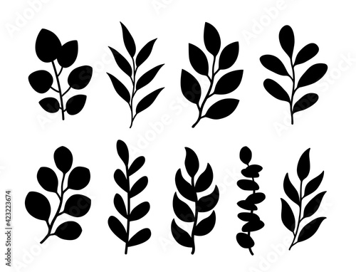 Fototapeta Tree branches with leaves silhouettes botanical set obraz
