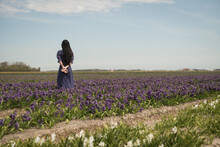 Rear View Of A Young Woman In A Vintage Blue Dress In A Field Of Purple Tulip Flowers Outside In A Dutch Landscape In Spring