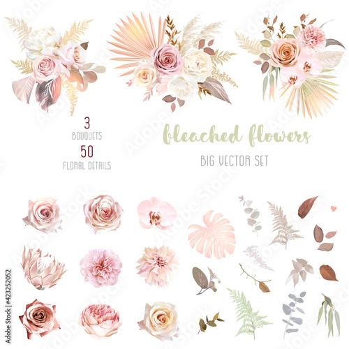 Fotografie, Obraz Trendy dried palm leaves, blush pink and rust rose, pale protea, white ranunculu