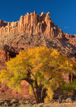 Capitol Reef National Park: The Castle In Autumn
