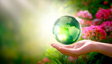 Earth Day Or World Environment Day Concept. Save Our Planet, Restore And Protect Green Nature, Sustainable Lifestyle And Climate Literacy Theme. Blooming Rose Flower Garden And Globe In Hand, 22 April