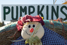 A Close Up Of A Smiling Scarecrow With A Pumpkins Sign Above.