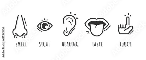 Fototapeta Five senses icon design with name obraz