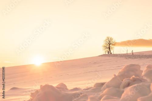 Fotografering Winter Sunset