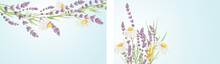 Summer Card With Bouquet. Birthday, Wedding Or Mothers Day Illustration. Vector Design Element, Lavender And Chamomile, Medicinal Herbs.