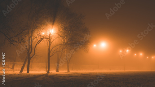 Fototapeta Oświetlona droga we mgle w Lublinie obraz