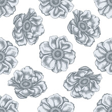 Seamless Pattern With Hand Drawn Pastel Anemone