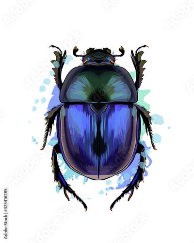 Photo Scarab beetle from a splash of watercolor, colored drawing, realistic