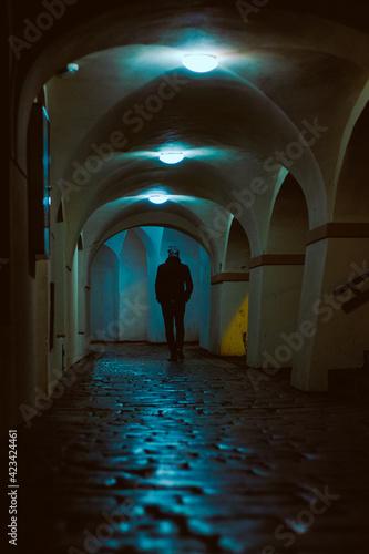 Billede på lærred old street of Prague at night