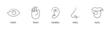 Five Human Senses One Line Drawing Design Icon Set. Vision Touch Hearing Taste Smell Senses Collection. Human Fillings Icons. Human Nervous System Senses. Eye Hand Ear Mouth Nose Icons Set. Vector