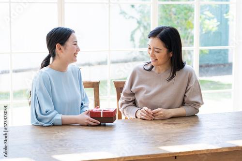 若い日本人親子のポートレート Fototapeta