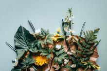 Composition Florale De Printemps à Plat Sur Papier Kraft