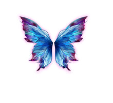 Butterfly Blue Isolated Insect White Wing Nature Wings Beauty Fly Animal Flying Black Morpho Color Colorful Beautiful Bright Summer Butterflies Spring Tropical Collection