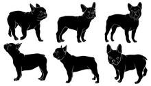 Hand Drawn Silhouette Of French Bulldog