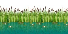Vector Water Lilies And Cattails In The Lake. Vector Illustration Of Attractive Blossom Water Lily And Reeds In The Pond.