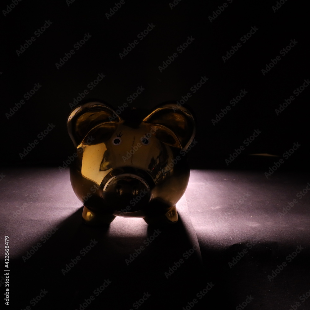 Fototapeta Świnka skarbonka ze światłem tylnym - obraz na płótnie