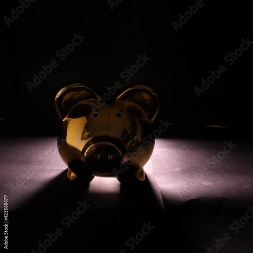 Fototapeta Świnka skarbonka ze światłem tylnym obraz na płótnie