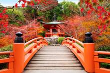 Japanese Autumn Scene. Travel To Kyoto.