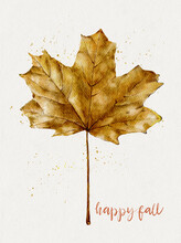 Isolated Single Autumn Dry Leaf  Water Colour On White Paper Background