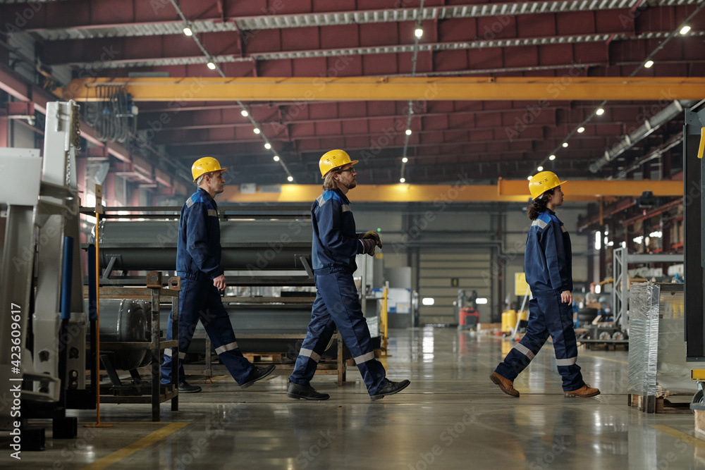 Fototapeta Side view of three engineers of modern factory or industrial plant moving forwards while going to another workshop or to have lunch