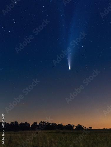 Fototapeta Comet NEOWISE obraz