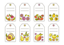 Label With Fruit Doodle Set Template. Tropical Price Tag Hawaiian Fruit, Pineapple Pear Watermelon And Tangerine, Fig, Lemon. Isolated Empty Frame Vector Illustration Juice Or Farmer Market Product