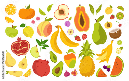 Exotic hawaiian fruit cartoon set. Tropical fruit, pineapple and blackberry, pear watermelon and tangerine. Flat vitamin apple plum apricot, fig, strawberry lemon. Isolated trendy vector illustration