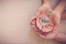 Hands Holding Growing Tree On Earth, ESG Environmental, Social And Corporate Governance Concept
