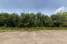 Outdoor Public Parking On Days When There Are No Cars Parked, With Concrete Blocks Floor With A Tree Line Behind