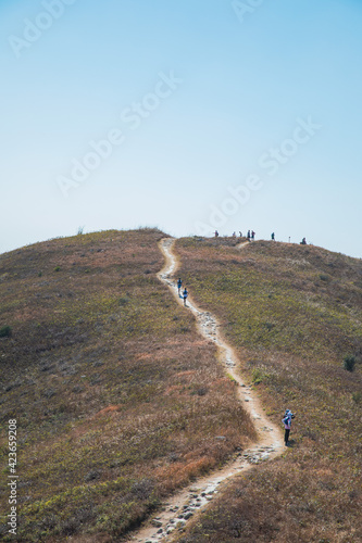 Crowd, many people walking along the footpath of hiking trail