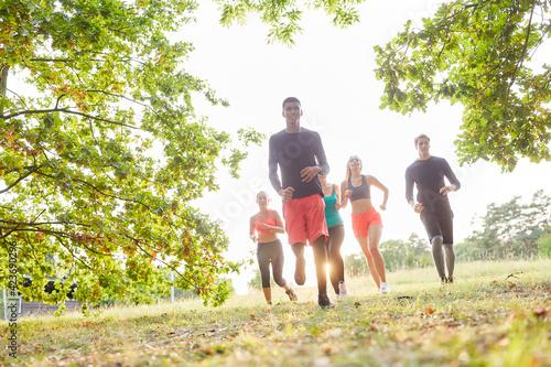 Fototapeta premium Gruppe junger Leute beim Crosslauf für Fitness