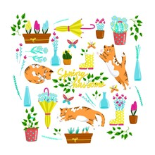 ..Collection Of Spring Elements With Cats In Different Poses, Set Of Beautiful Spring Flowers And Compositions, Floral Vector Objects In Cartoon Style, Red Fat Cat.