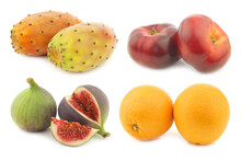 Assorted Tropical Fruit On A White Background