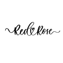 Red Rose - A Calligraphic Inscription In Line.