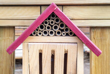 Red Roof On The Insect Hotel