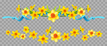 Floral Borders Set With Daffodils On Transparent Background.