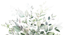 Watercolor Botanic, Leaf And Buds.  Herbal Composition For Wedding Or Greeting Card. Spring Border With Leaves Eucalyptus