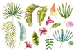 canvas print picture - Watercolor tropical leaves and flowers collection. Set of exotic hand drawn leaves. Exotic flowers set.