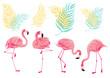 Leinwandbild Motiv Set of flamingos, Tropical icons, Flamingo, Palm leaves, exotic animals, birds illustration