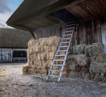 Traditional Historic Farms At Open Air Museum Orvelte Westerbork Drenthe Netherlands. Hay Stach And Ladder.
