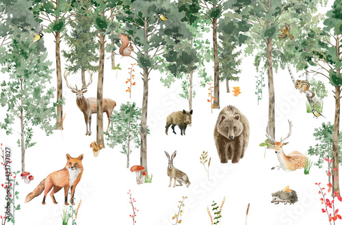 Children's wallpaper. Watercolor forest with animals. Tapéta, Fotótapéta