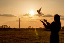 Woman Launches Pigeon Into The Sky And Praying .