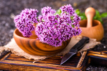 Still Life Of Fresh Flowers Oregano In Wooden Eco-friendly Plate And Wooden Mortar With Dried Medicinal Plants Origanum Vulgare, Sweet Marjoram Herb.