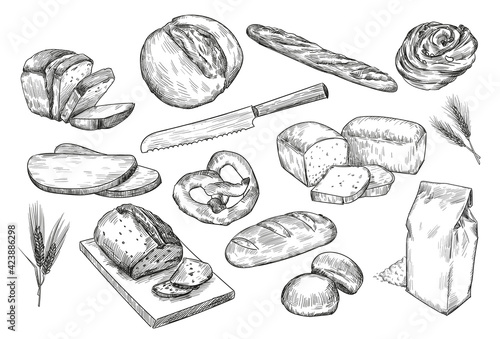 Fototapeta Hand drawn sketches of different bread. White and black isolated illustrations of french baguette, package of flour, wheat, rolls, toast baton for bakery, pastry concept obraz
