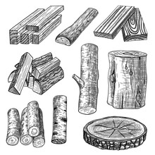 Cut Logs, Firewood And Planks Engraved Vector Illustrations Set. Hand Drawn Sketch Of Wooden Materials, Trunk, Stump, Timber, Pieces Of Tree, Chopped Wood On White Background. Lumber, Timber Concept