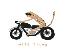 Wild Thing. Cute Vector Illustration With Cool Tiger Riding A Motorcycle. Wild Cat On A Motorbike Isolated On A White Background. Infantile Style Print Ideal For Card, Wall Art, Poster.
