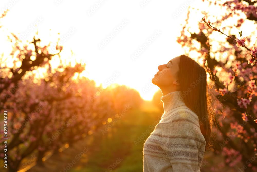 Fototapeta Woman breathing at sunrise in a field - obraz na płótnie