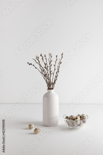 Easter eggs in bowl and willow bouquet on white background, space for text Wallpaper Mural